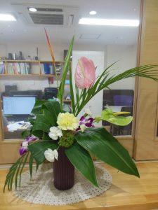 玄関の花3