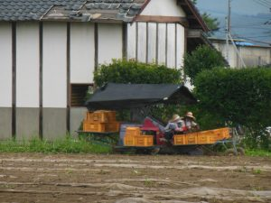 芋畑機械3