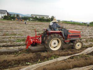 芋畑機械2